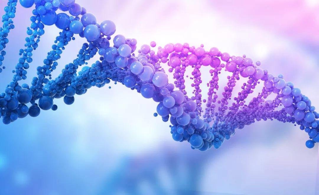 """联想HPC助力浦洛通""""精准医疗"""",基因测序实现5倍性能提升"""