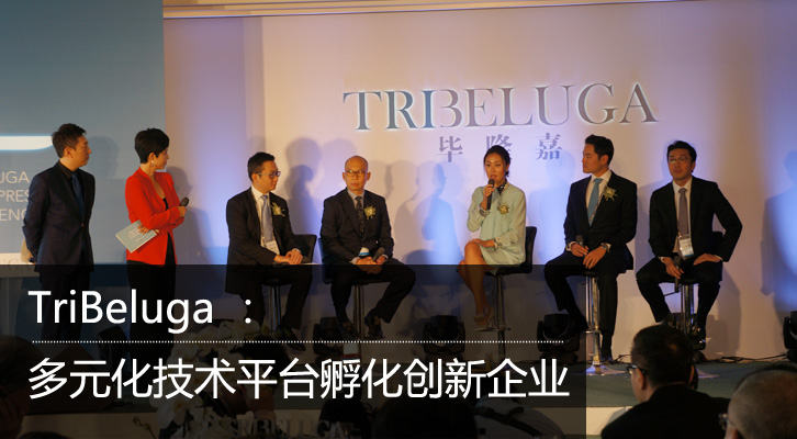TriBeluga :多元化技术平台孵化创新企业